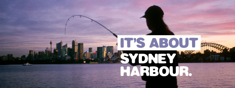 H12 syd harbour