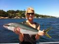Sydney Kings Summer 2012