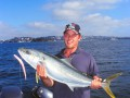 Kingfish on Lures, by Craig McGill