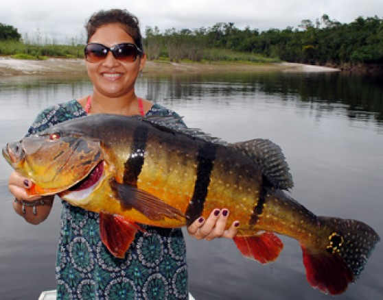 Fishabout fishing aventures world wide fishing tours for Mississippi fishing license cost